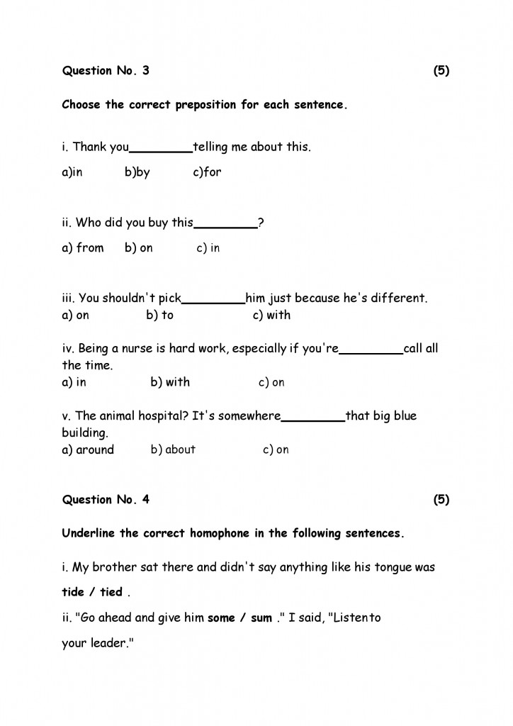 English Model Paper 6-page-006